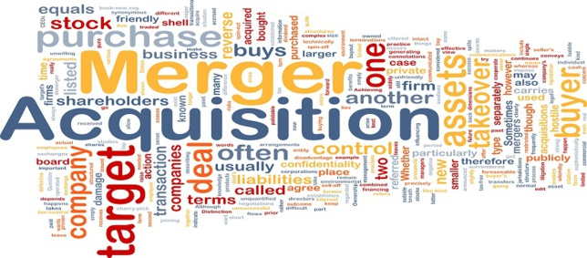 FUSIÓN DE EMPRESAS. MERGERS & ACQUISITIONS (I)